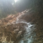 大雨洪水とその後始末