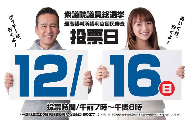 衆院選挙121216